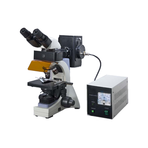 Fluorescence Microscopes