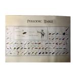 Bio Periodic Tables